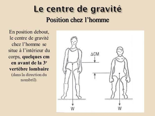 centre de gravité se situe au niveau de la 3 vertèbres lombaire – RechercheGoogle (1)