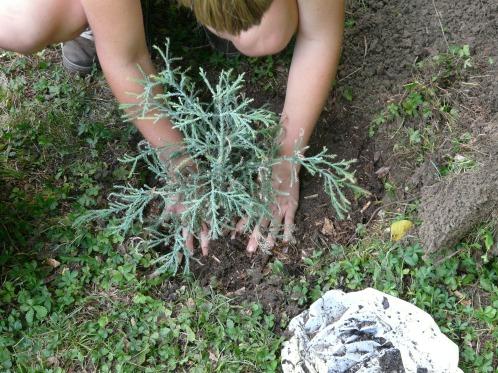 Cultiver la terre